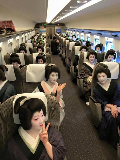 舞妓 新幹線